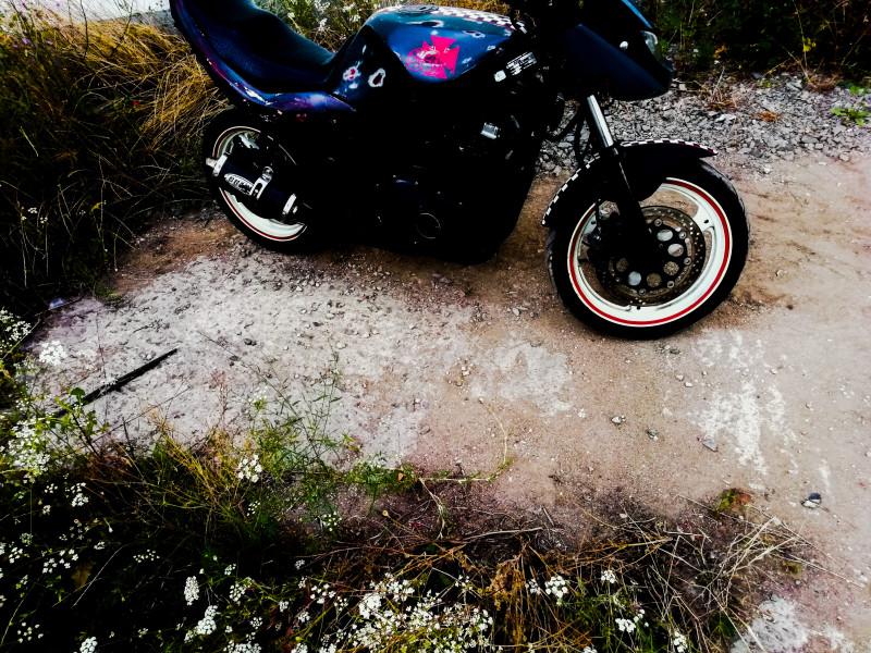 11- Suzuki Gs