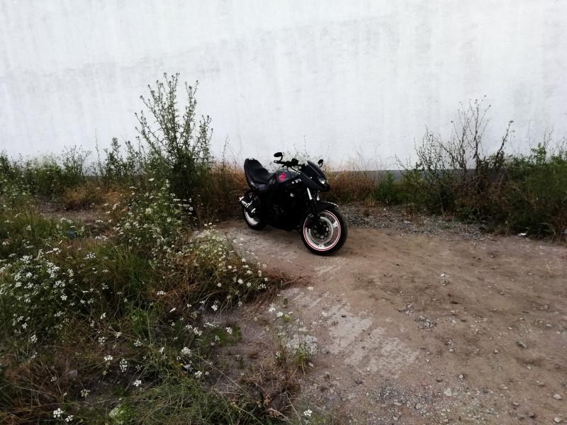 12- Suzuki Gs